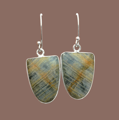 Aragonite Earrings in Shield Shape with amazing plaid coloring