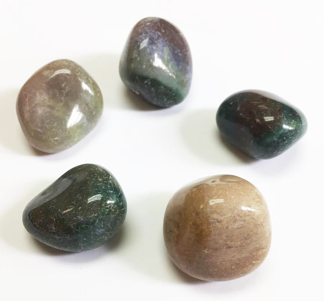 Bloodstone in a quarter pound lot natural tumbled stones