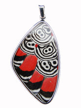 Load image into Gallery viewer, Butterfly Wing Pendant Cramers 88 Butterfly Size XL