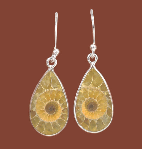 Fossilized Ammonite  Cabochons Tear Drop Silver Dangle Earrings - Sacred Geometry