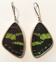 Load image into Gallery viewer, Butterfly Wing Earrings Green Banded Large