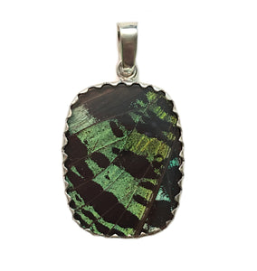 Butterfly Wing Pendant Green Banded Urania Leilus Medium Rectangle