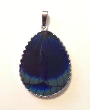 Load image into Gallery viewer, Peacock Butterfly Wing Pendant Large Pear Shape