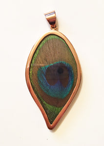 Peacock Feather Pendant in Copper Frame