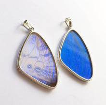 Load image into Gallery viewer, Butterfly Wing Pearl Blue Morpho Pendant in Size Large