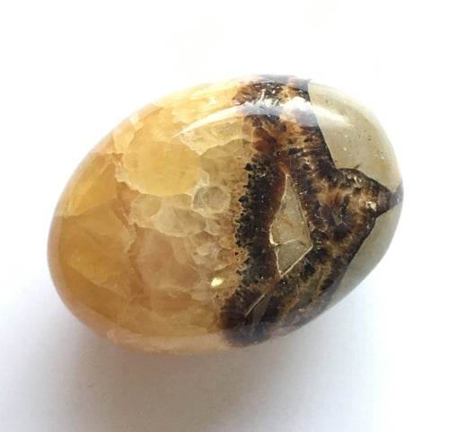 Septarian Nodule Palm Stone aka Dragon Stone Palm Stone