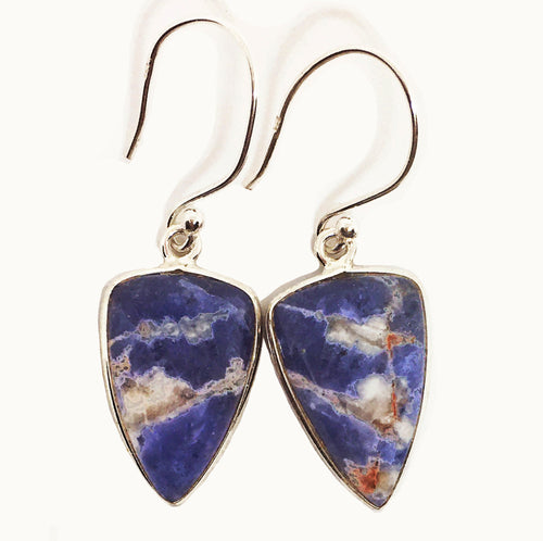 Sodalite Earrings from Minas Gerais