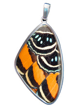 Load image into Gallery viewer, Butterfly Wing Pendant Speckled Numberwing in Sterling Silver in Extra Large Size