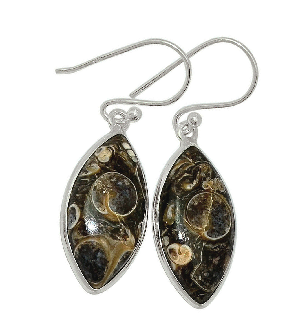 Turritella Agate Earrings in Marquise Sterling Silver Settings