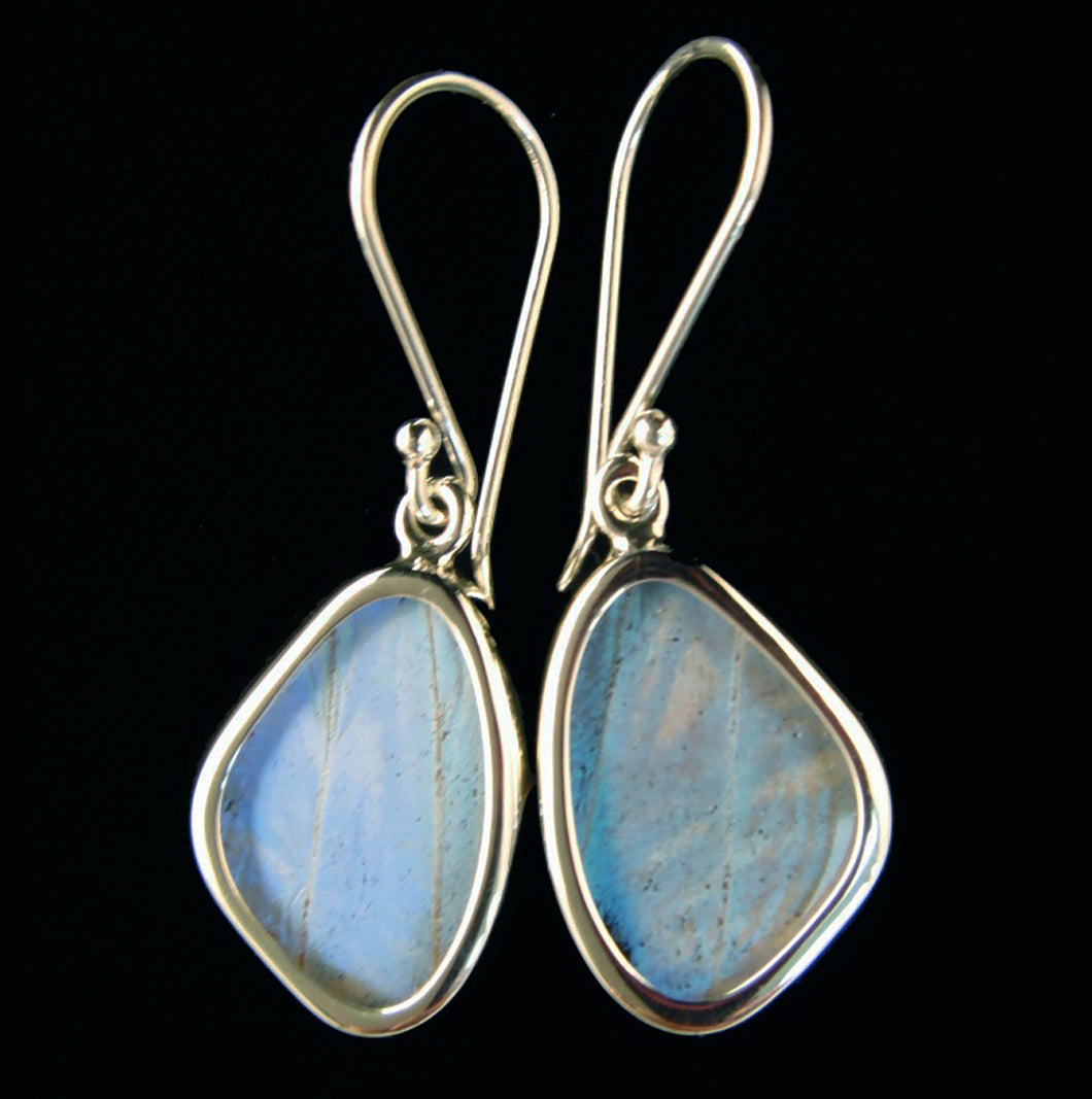 Pearl Blue Morpho Butterfly Earrings in Extra Small