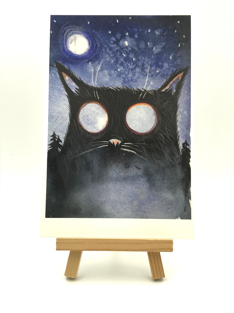 Moon-Eyed Cat