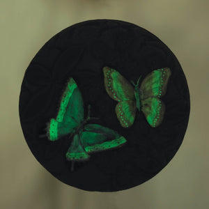 GLOW IN THE DARK BUTTERFLY GARDEN STONE