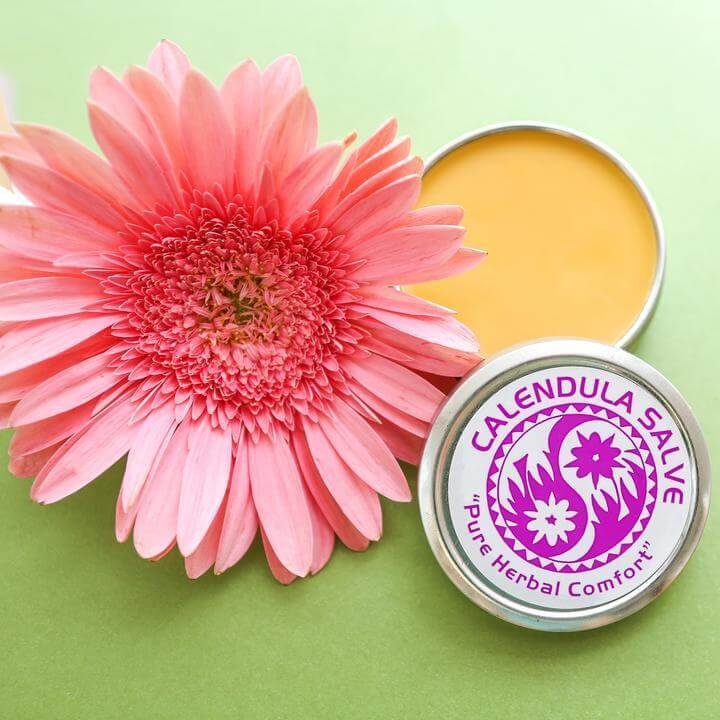 Calendula Salve 4 oz.  tin containter that is open, showing the beautiful yellowish orange color of the saleve. There is a big, beautiful pink flower sitting next to it. It is all on a green background, providing nice contrast.