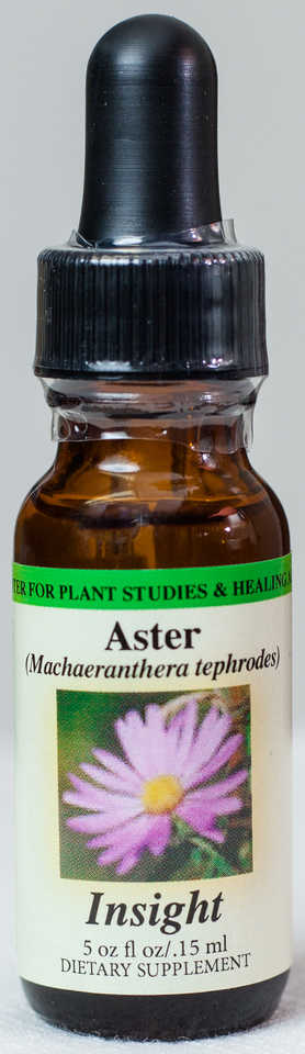 Aster (Insight) Flower Essence  - Center for Plant Studies & Healing Arts.