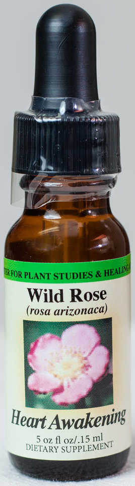 Wild Rose (Heart Awakening) Flower Essence  - Center for Plant Studies & Healing Arts.