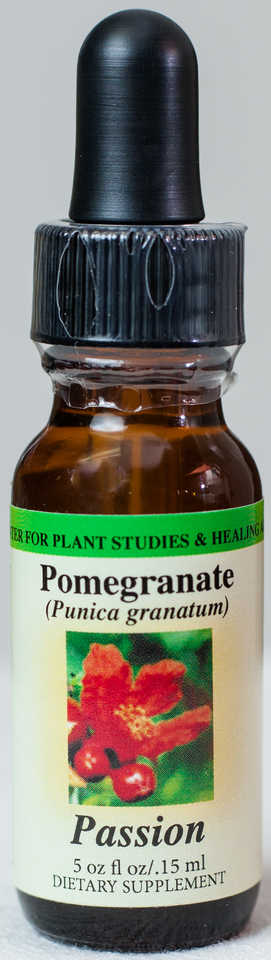 Pomegranate (Passion) Flower Essence  - Center for Plant Studies & Healing Arts.