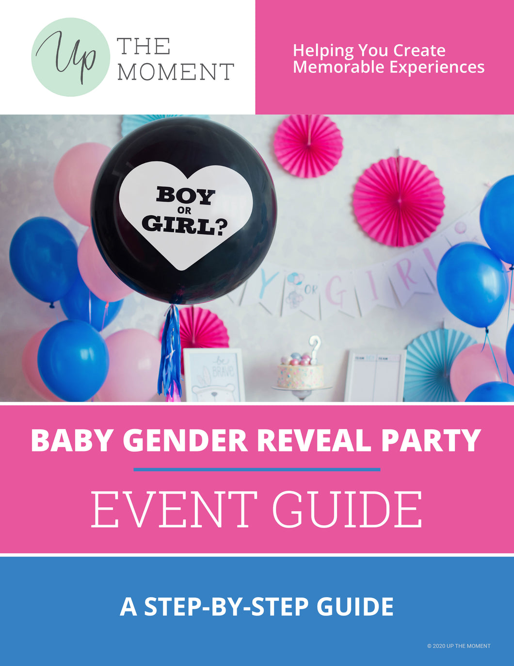 Baby Gender Reveal Party EVENT GUIDE