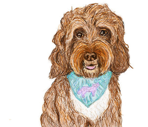 Sketch Digital Pet Portrait