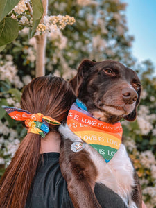 Rainbow Love is Love Pride Bandana