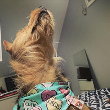 Load image into Gallery viewer, Love Hearts Bandanas - The Collective Wolf