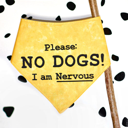 NO DOGS Yellow Club Bandanas
