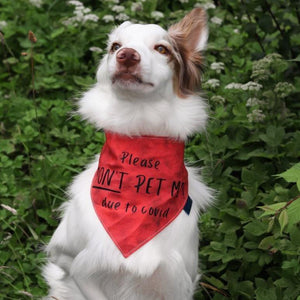 Red 'Attention Grab' Message Bandanas