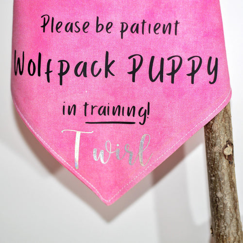 Pink 'Attention Grab' Message Bandanas