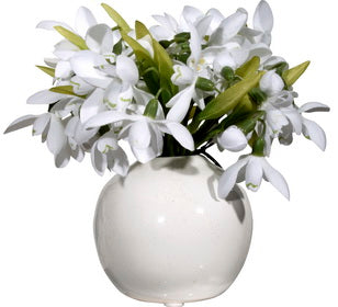 Snowdrop Arrangement in White Vase