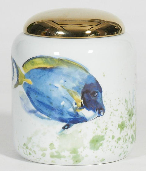 Dory/Tropical Fish Short Jar with Gold Lid