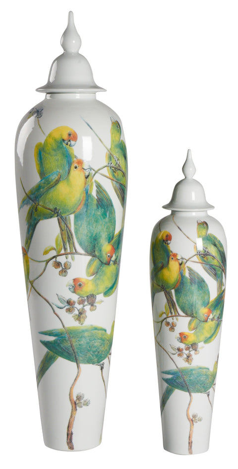 Macaw Flock Jar with White Lid