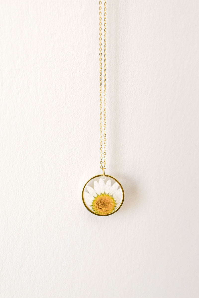 Daisy Pressed Flower Necklace (Gold)