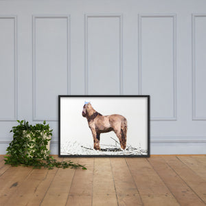 Abstract horse looking at You, Framed poster