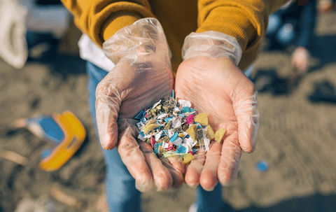 microplastics found on a beach