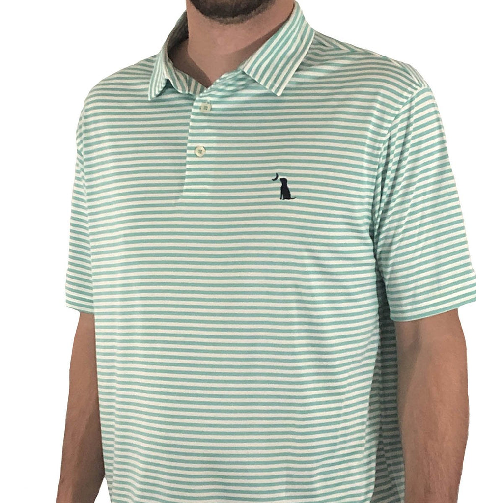 PENCIL STRIPED POLO - Turquoise/White