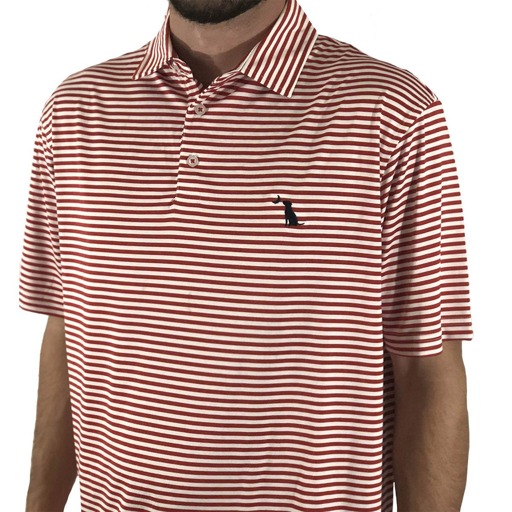PENCIL STRIPED POLO - Samba/White