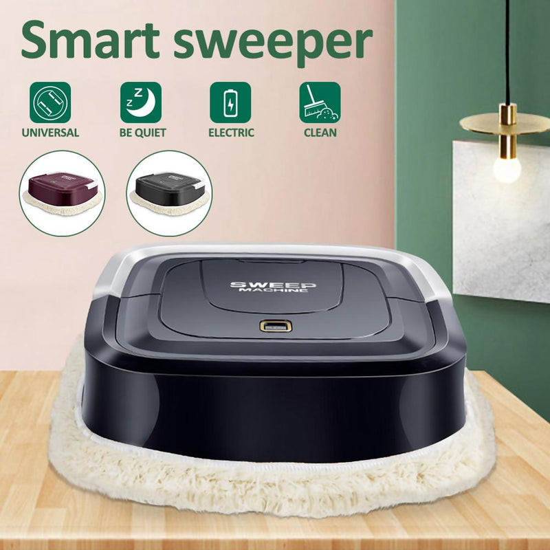 Portable Smart Sweeper