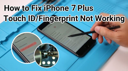 Touch ID Not Working On iPhone 7 Plus – How To Fix?