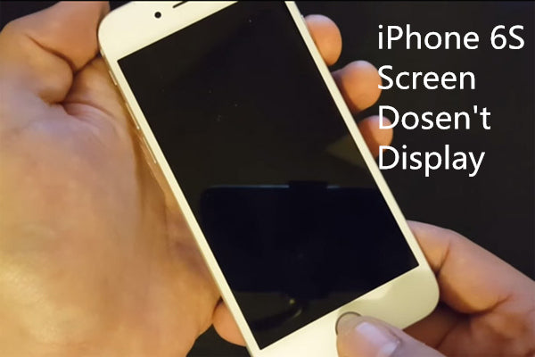 How to Fix iPhone 6S Screen Doesn't Display