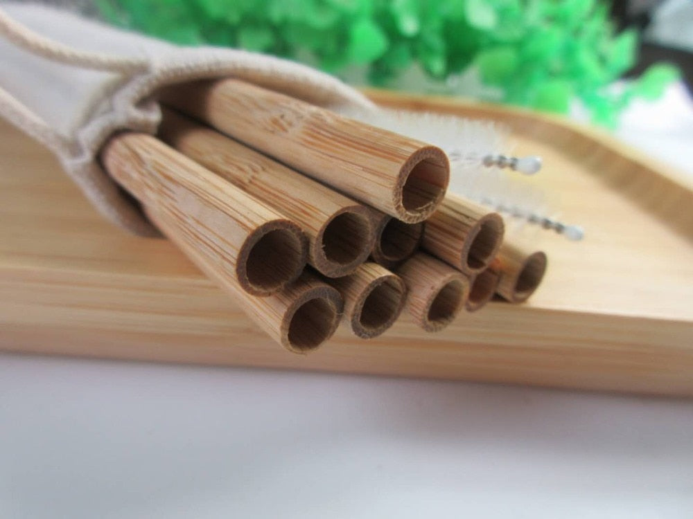 100 Eco-Friendly Bamboo Straws
