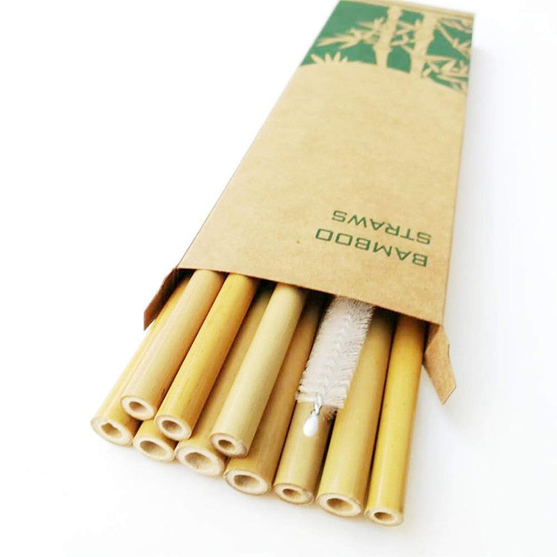 Compact Natural Organic Bamboo Straw Set