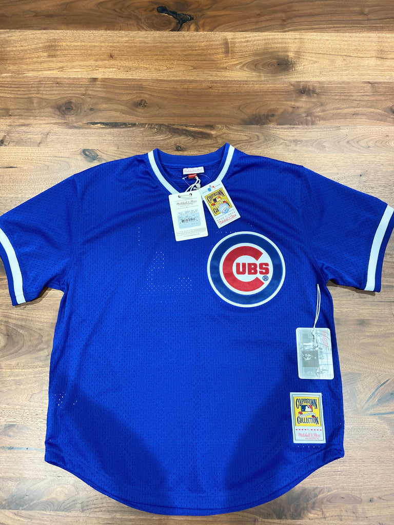 Ryne Sandberg #23 Chicago Cubs Mitchell & Ness Authentic 1984 BP Jersey