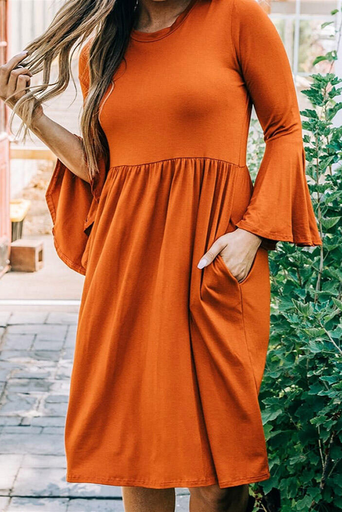 Flare Sleeve Pleat Pocket Dress