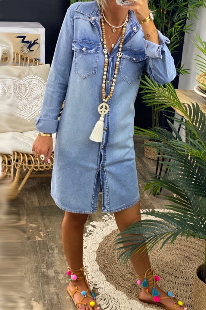 Denim Long Sleeve Button Dress
