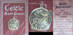 Sterling Silver Celtic January Birth Charm Pendant - Silver Insanity