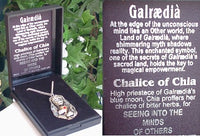 CHALICE of CHIA Priestess Huge GOTHIC Pendant Necklace - Silver Insanity