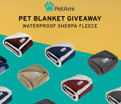 petami waterproof blanket giveaway november 2020