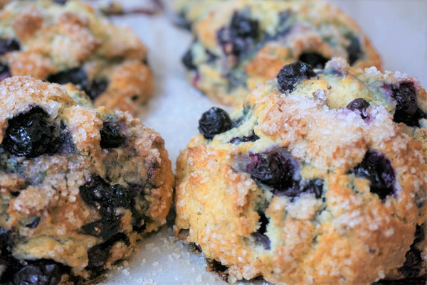 1/26  Buggy Bake - Blueberry Scone
