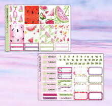 Load image into Gallery viewer, Watermelon Planner Stickers | Erin Condren | Weekly Kit