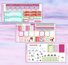 Load image into Gallery viewer, Watermelon Planner Stickers | Hobonichi Weeks | Weekly Kit