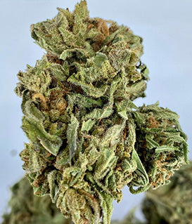 Indoor Durban Poison CBD Hemp Flower (18.5% Cannabinoids)
